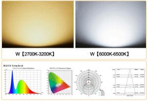 LEIDENE Vloed die het Openlucht Waterdichte LEIDENE van de Schijnwerper van de Controle 30wled van de Sensor van de Motie van Lichten Licht van de Vloed aansteekt