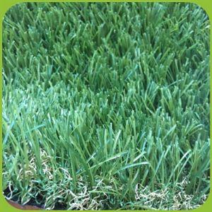 Landschaftsnatur-Farbe, die künstliches Gras mit starkem Gefühl schaut