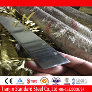 Ss SUS het Inleggen Vlakke Staaf 304/1.4301 van het Roestvrij staal