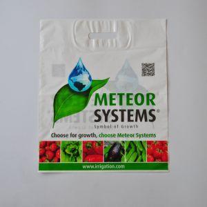 Zoll druckte Plastikgeschenk-Einkaufstasche mit gestempelschnittenem Griff-niedrigem Preis