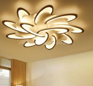 Het moderne Goedkope en Goede Acryl LEIDENE van de Kwaliteit Licht van het Plafond voor Decoratie zf-cl-039 van het Huis