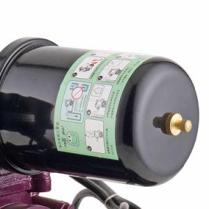 De beste Pomp van het Water van de Instructie van de Elektrische Motor van India Nuttige 1HP 1.5HP van de Prijs 220V Zelf