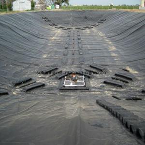 Prezzo della fodera dell'HDPE 0.75mm Geomembrane dell'impresa di piscicolture del serbatoio del filtro