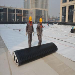 Het Dak die van de garage HDPE van het Kuiltje van 12mm de Raad van de Drainage waterdicht maken