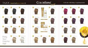 Kleurstof van het Haar Colorshine van Tazol de Kosmetische Permanente (Natuurlijke Zwarte) (50ml+50ml)