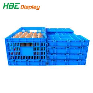 Nestable & empilables de caisses en plastique de pliage pour oeuf la prestation de