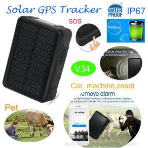V34を置くGPS/Lbs/WiFiの2019新しい防水太陽GPSの追跡者
