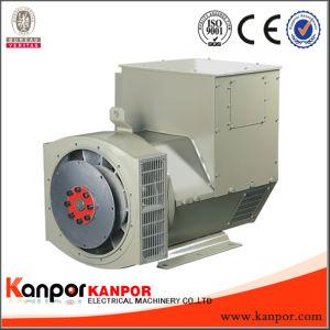 Stf164 6.5kw-16kw 무브러시 AVR 삼상 발전기