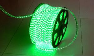 5050 striscia flessibile ad alta tensione di 72LED/M 220V 14.4W LED