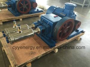 Cyyp 50 Uninterrupted Service Large Flow와 High Pressure LNG Liquid Oxygen Nitrogen Argon Multiseriate Piston Pump