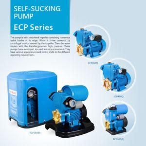 Auto-bomba de sucção da bomba de água eléctrica Self-Priming ECP