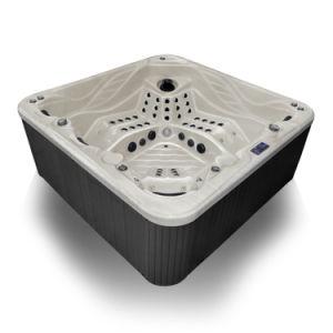 Haut Grade Jacuzzi SPA bain à remous (S800)