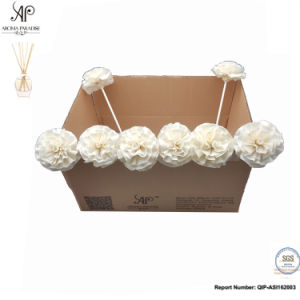 Sola Flower 8 PCS/caixa do difusor Reed Craveiro, acessório de decoração de flores secas
