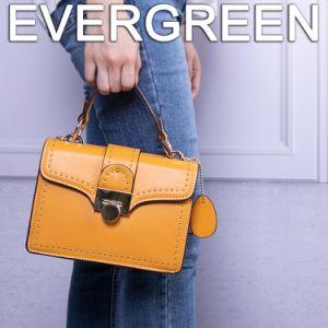 De Schouder van het Leer van Pu Dame Bag Fashion Designer Women Handtas (SH517)