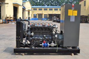 30kw silenciosa do gerador de gás natural