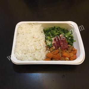 昇進のファースト・フード包装ペットプラスチックお弁当箱