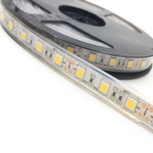 Indicatore luminoso di striscia flessibile bianco impermeabile di IP65/IP68 SMD 5050 RGB LED per la decorazione di natale