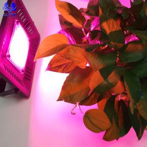 Venda por grosso PI67 alto lúmen Full Spectrum COB crescer LED acende