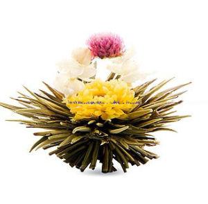 Жасмин цветущих чай (белый чай материал)