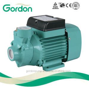 Jardin rotor en laiton électrique des périphériques avec câble d'alimentation de pompe à eau