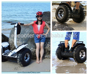 中国の新しいブランドの電気一人乗り二輪馬車、販売のための電気計量器のスクーター