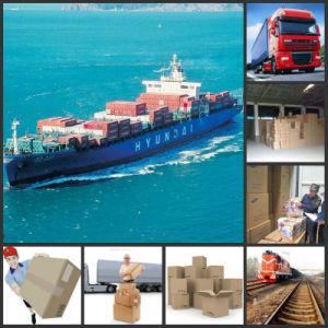 Spoorweg, Verschepende Container, Scheepvaartmaatschappij, de Agent van de Vracht, het Verschepen Kosten van China aan Tashkent, Boukhara Samarkand Oezbekistan
