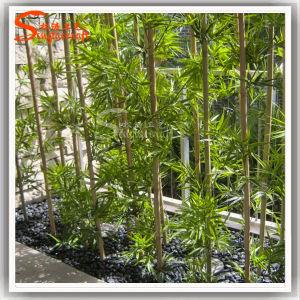 Barato Falso Artificial decorativos para plantas de bambu