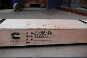Arbre à cames (Cummins 3066877) pour le CCEC moteur