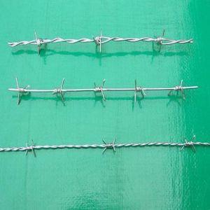 Spinato-collegare del PVC o galvanizzata Coated (ZL-BW)