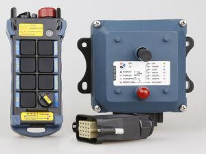 Radiofernsteuerungs- 433MHz/Kräne Fernsteuerungs/industrielles Fernsteuerungs
