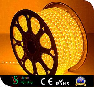 3528/5050 SMD Seil-Lichter für den Speicher dekorativ