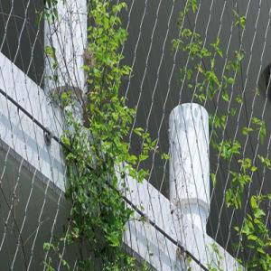 Maglia tessuta mano della fune metallica dell'acciaio inossidabile per la decorazione