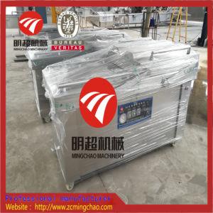 De Vacuüm Verpakkende Machine van het voedsel met Roestvrij staal SUS304