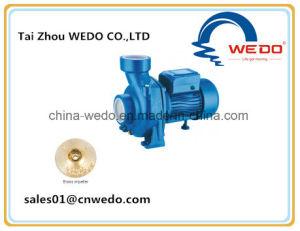 Hf Pompe à eau centrifuge avec une bonne qualité