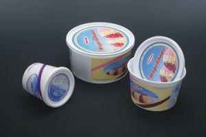 extrudeuse à double vis Pet pour la production de tasses (DTC-800)