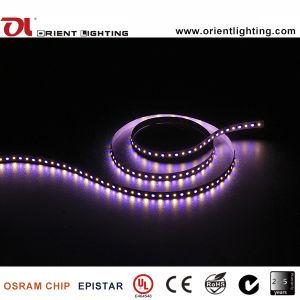 Indicatore luminoso di striscia flessibile del Ce 24VDC SMD5060RGB+2835W LED dell'UL
