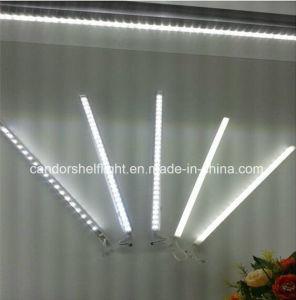 indicatore luminoso della mensola di 3000-6500K LED per servizio personalizzato zona fresca disponibile