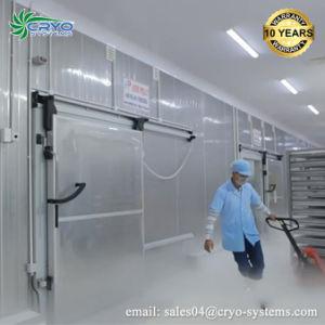 魚肉の鶏のフルーツ野菜のための力セービングの低温貯蔵部屋