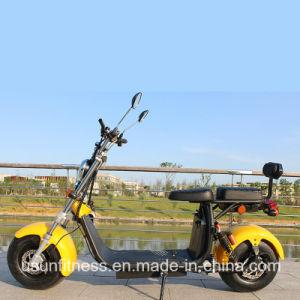 Cee/Coc Harley Scooter électrique avec les roues de matières grasses pour les adultes des sièges doubles