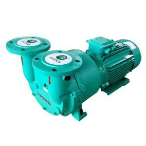 De Vacuümpomp sk-3D 5.5kw van de Ring van het water voor Verkoop