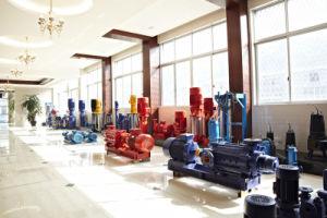 Fast 20 Jahre Erfahrungs-chinesische Pumpen-Hersteller-