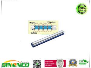 De magnetische Staaf van de Filter met 12000 Gauss, 316L Roestvrij, Diamter 32mm