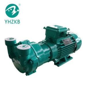 Sk3A液体または水リングの真空ポンプ