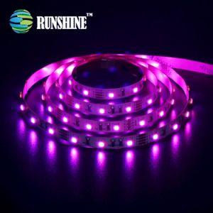 Tira de LED SMD impermeables3528 azul violeta, rollos de 20 metros