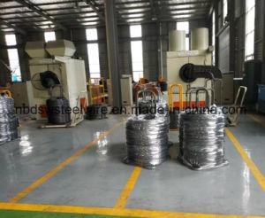 Filo di acciaio estratto alta qualità dello Spoke SAE1045