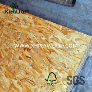 1220x2440mm Venda Quente Oriented Strand Board OSB3 Grau