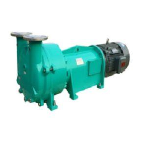 2BV6 111 Anillo de agua bomba de vacío para maquinaria de espuma