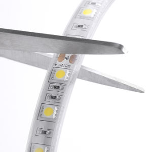 Imperméable IP22/IP44/IP65/IP68 SMD5050 DC12V/24V/220V/110V LED RVB/RGBW Flexible Strip Light