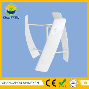 500W 12V/24V vertikaler windbetriebener Generator