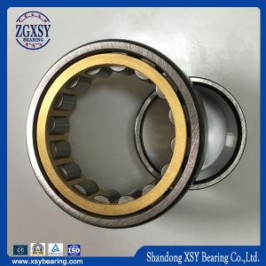 Latón de nylon de alta capacidad de la jaula de acero de rodamiento de rodillos cilíndricos